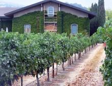 Clos du Val Winery-Napa, CA